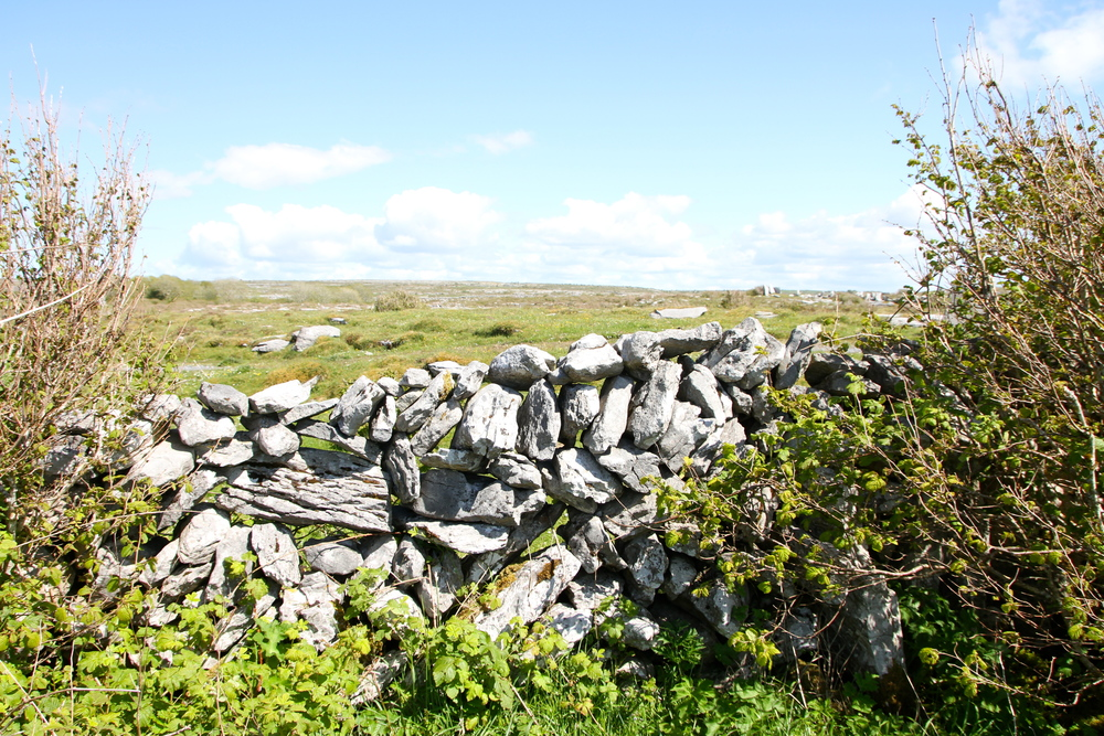 The Burren, Co. Clare, Ireland.