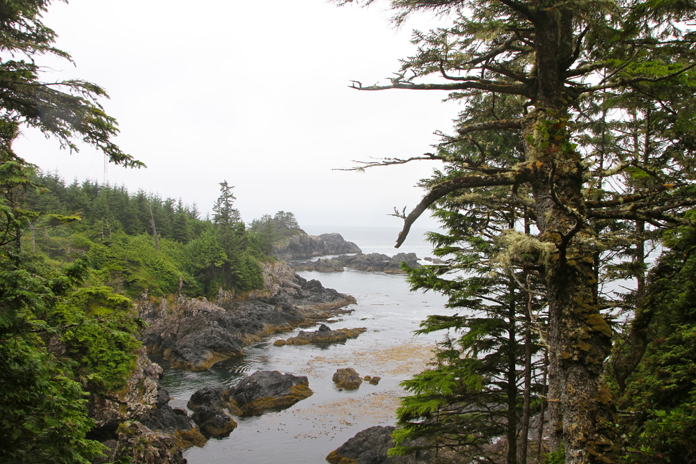 The Wild Pacific Trail, Ucluelet, BC, Canada.