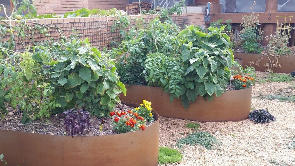 Corten Planter.jpg