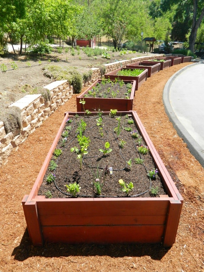 After You Have Planted Your Veggie Starts, Water Them In Well. And Donu0027t Be  Shy On Filling Your Yard With Garden Mounds And Planters To Get A Lot  Growing!