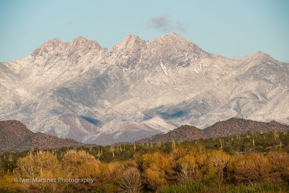 Saguaros on the foreground makes a sense of wonder when surrounded by snow covered Four Peaks