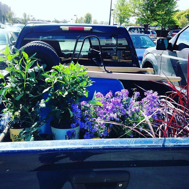 Install day. #familiarworkshop #landscapearchiteture #planting
