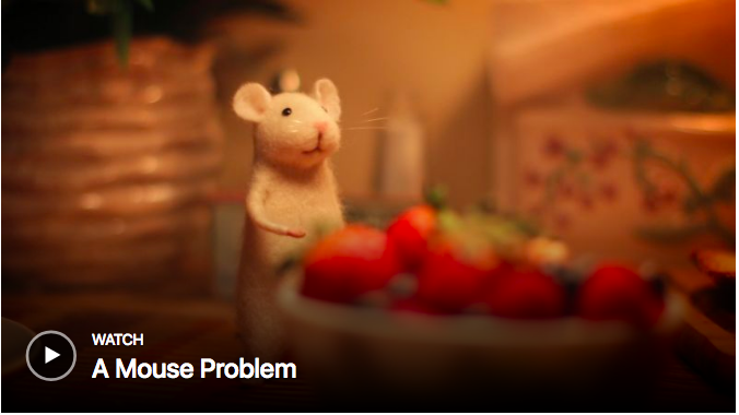 Mouse Problem Image.png