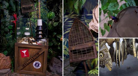 Insectarium2.jpg