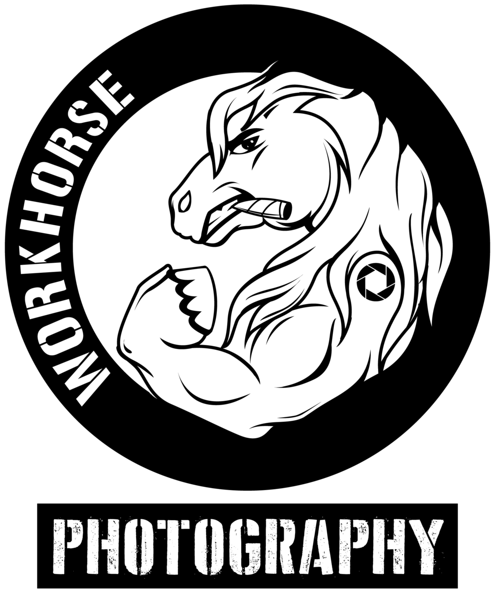 Workhorse Photography