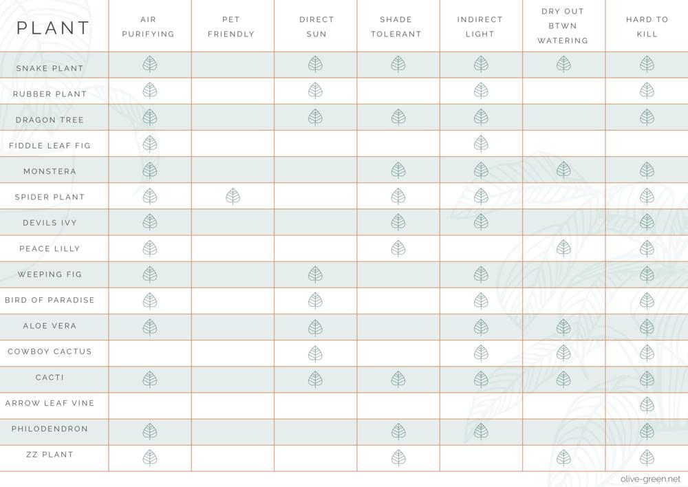 OG_Plants Chart copy.png