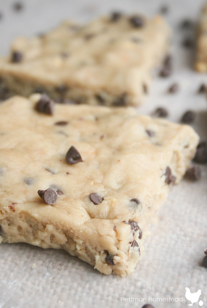 Clean Eating No Bake Cookie Dough Bars!