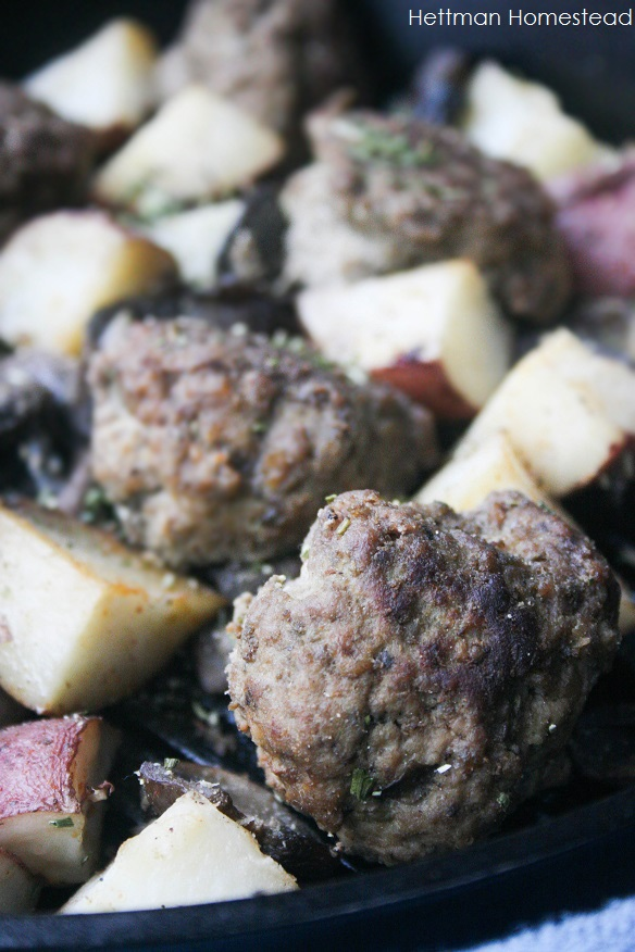 meatballs-2-final.jpg