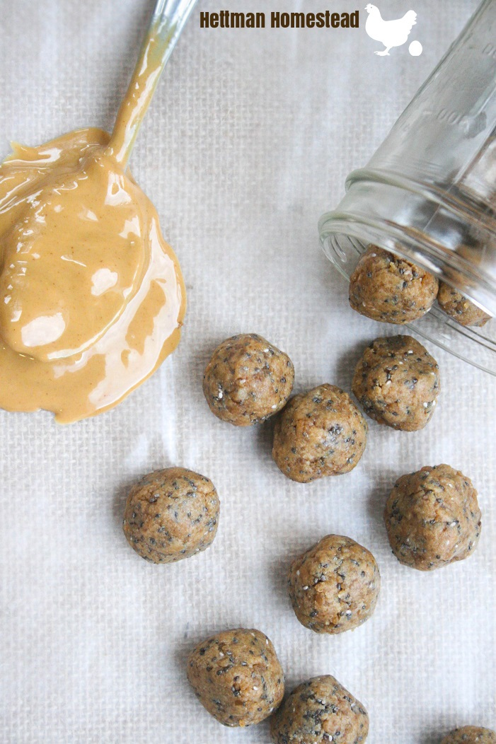 Peanut Butter Chia Seed Protein Bites