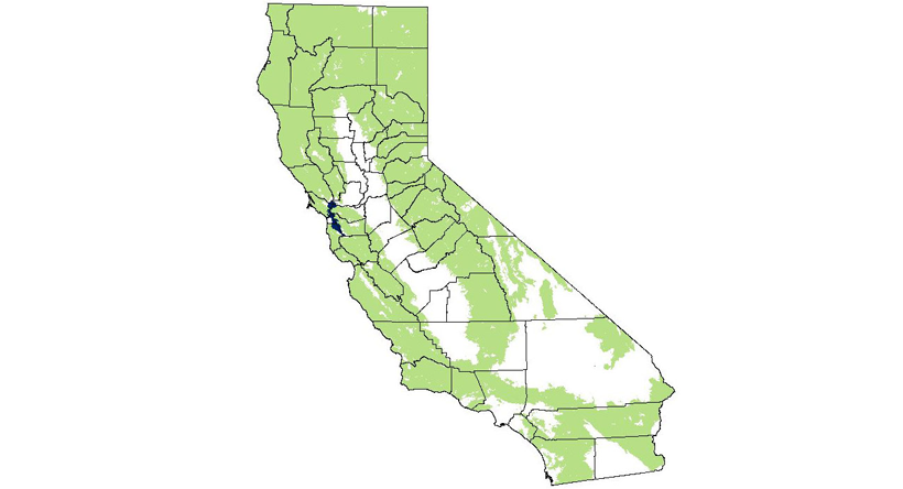 California mountain lion distribution.  Source:  naturemappingfoundation.org