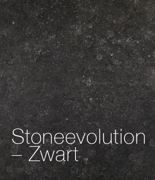 terra_stoneevolution_zwart.jpg