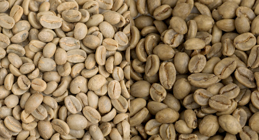 Coffee before and after decaffeination