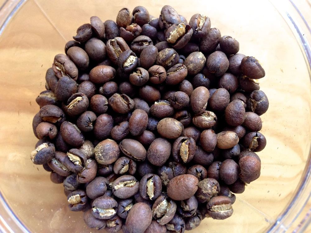 Roasted Doi Chang peaberry