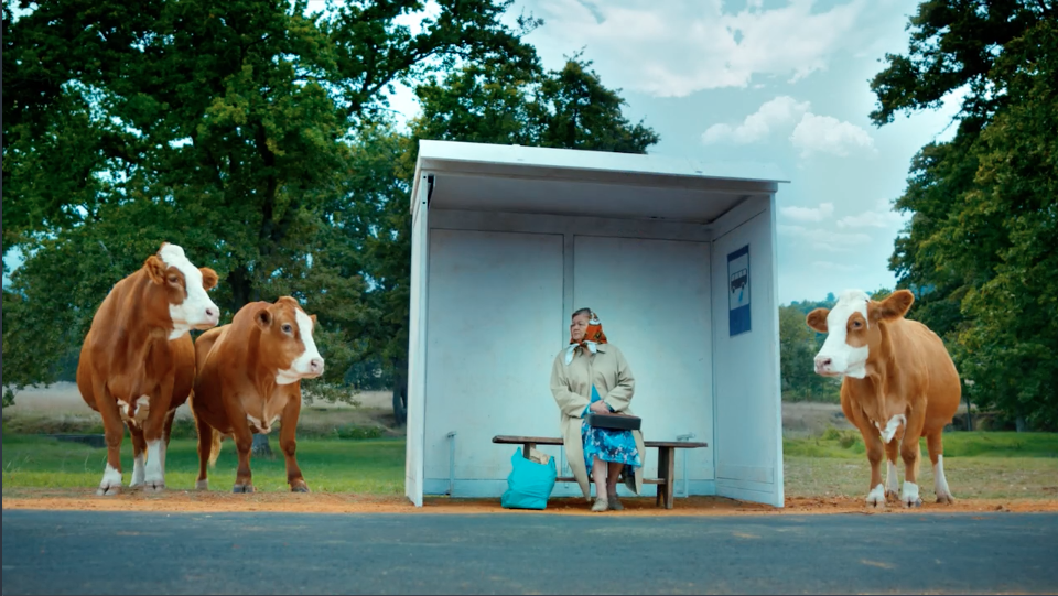 "MIGROS SUPERMARKET - ""COWS IN THE CITY"" - Paulo Henriques"