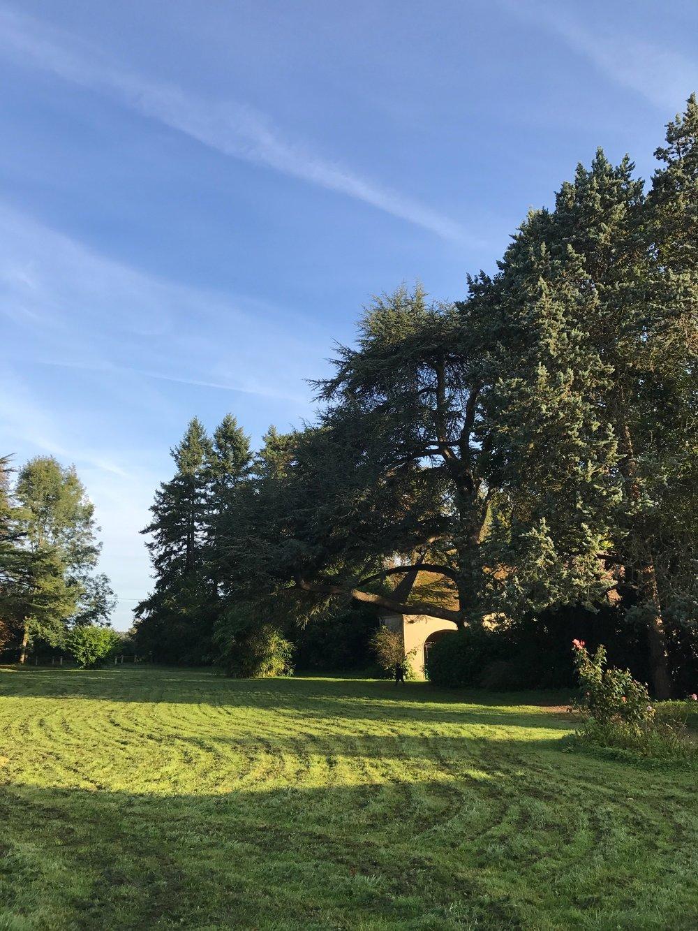 Chateau de la Ruche garden