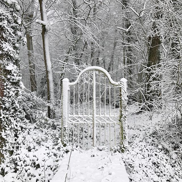 Snow! The gate to nowhere looking magical @chateaudelaruche ❄️ ❄️ ❄️