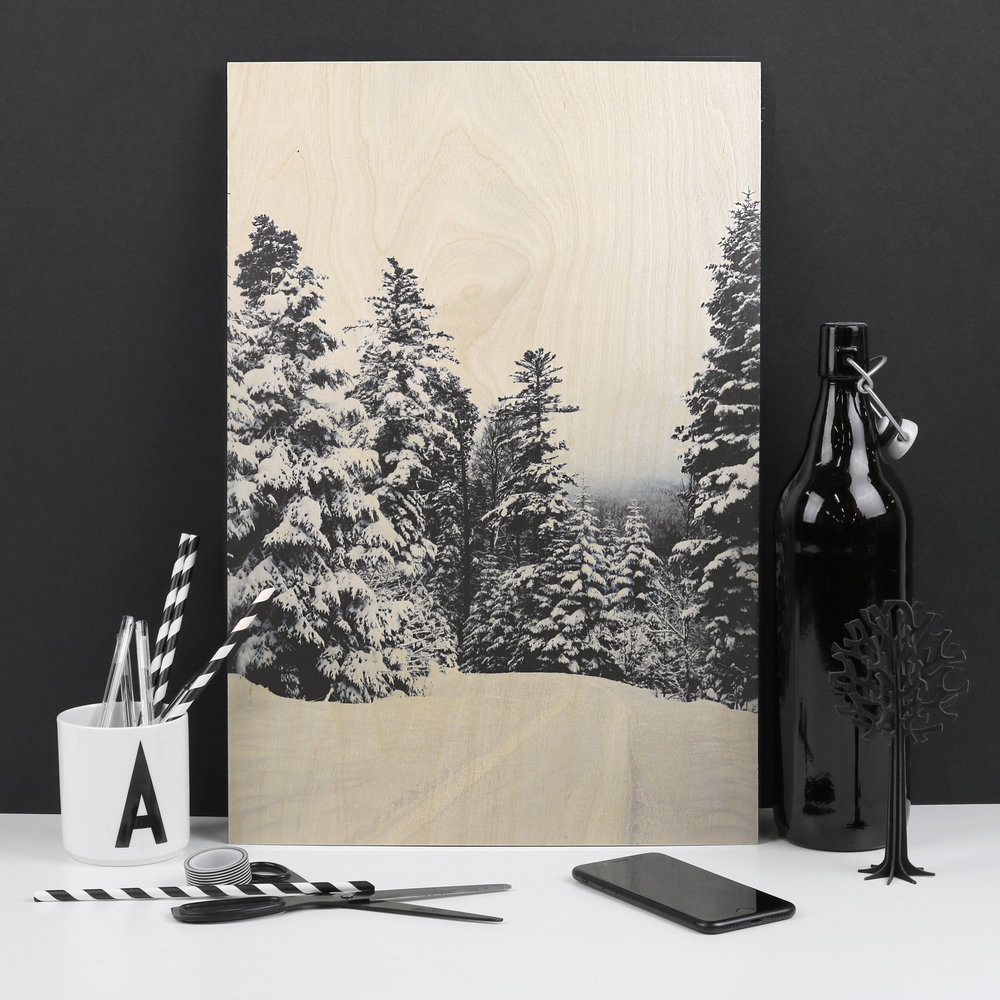 snow forest black and white desk.jpg