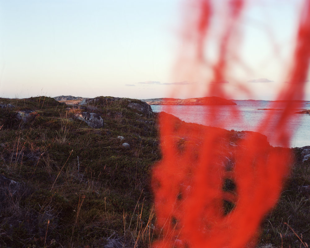 Red Fishing Net #01 2016 Analog C-print 125 x 100 1/8