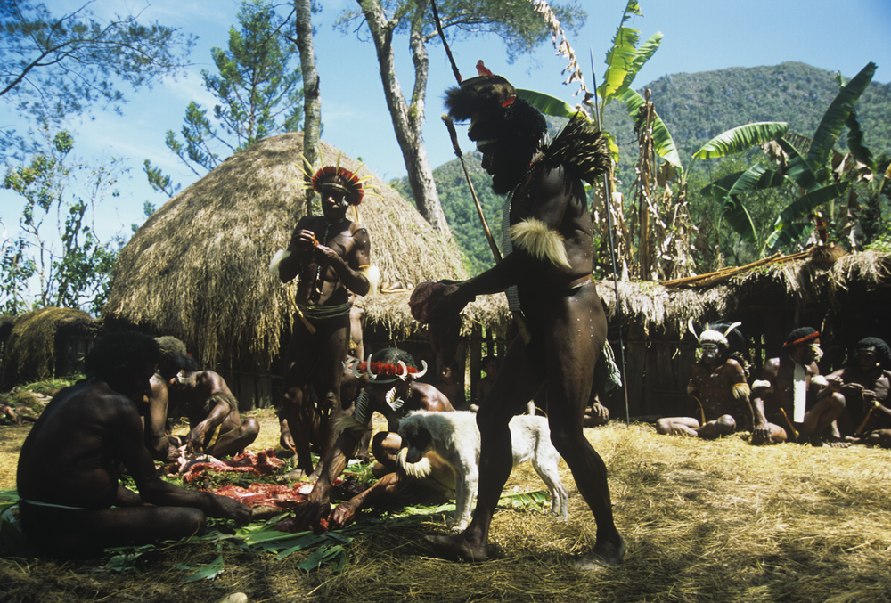 NewGuinea-4.jpg