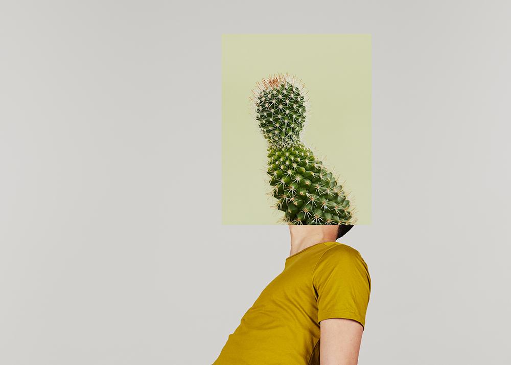 Cactus-copy.jpg