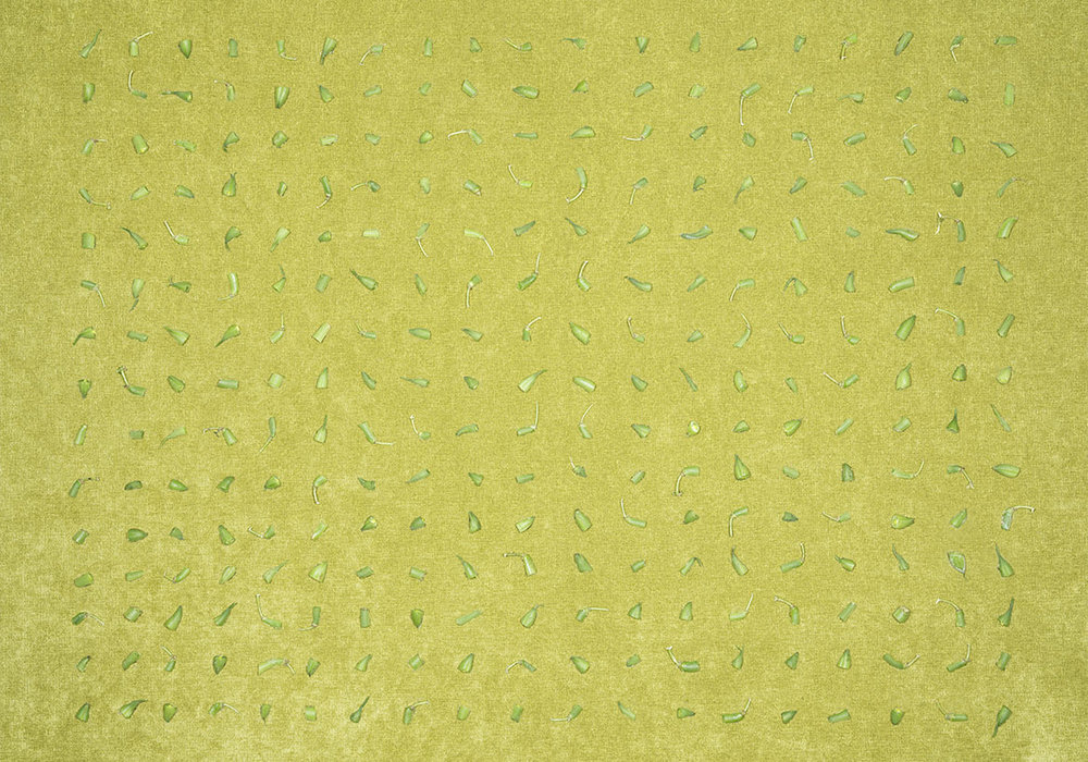 Green Bean Ends on Green Upholstery Fabric