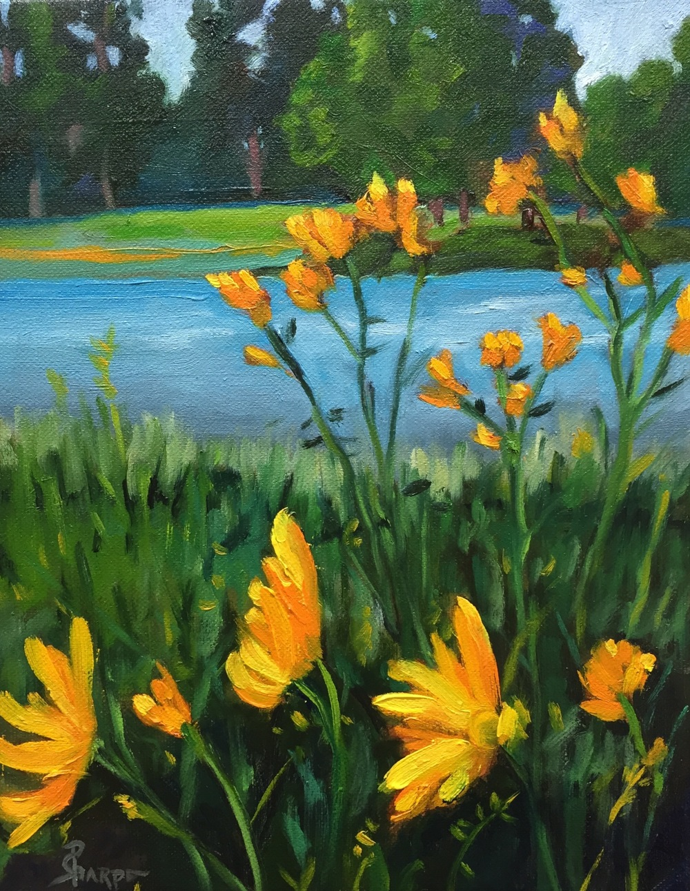 water-yellow-flowers-oil-paintings-phyllis-sharpe-IMG_0747.jpg