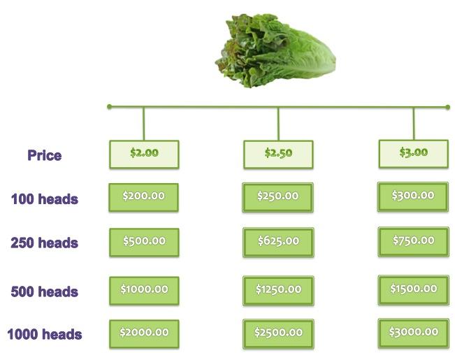 Lettuce Pricing