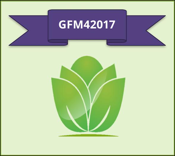 GFM Offer Code.png