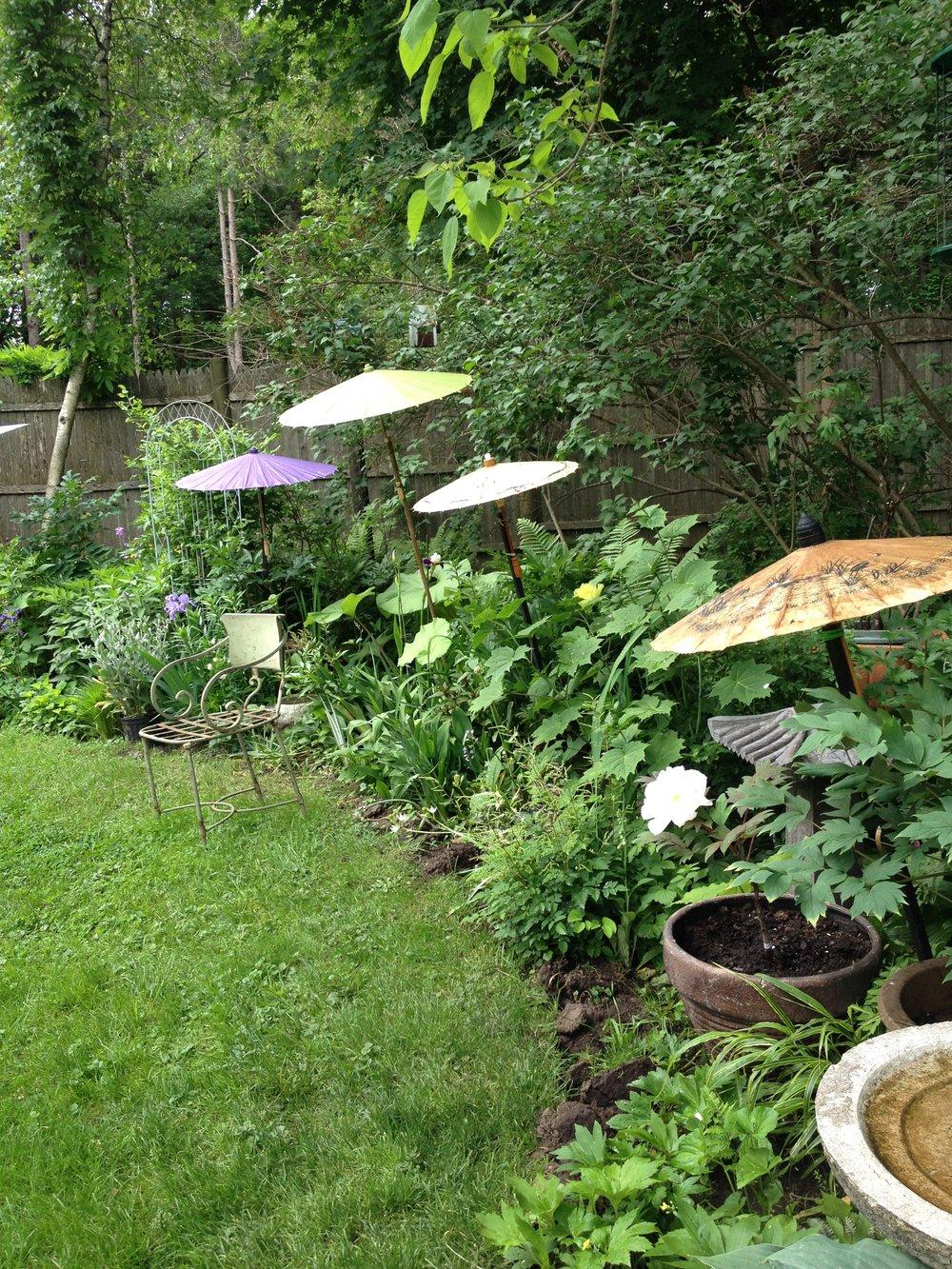 Choo Whyte Garden