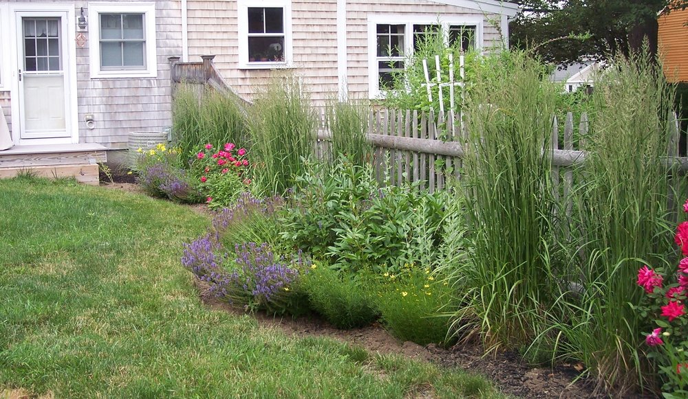 Sally Milewski Garden