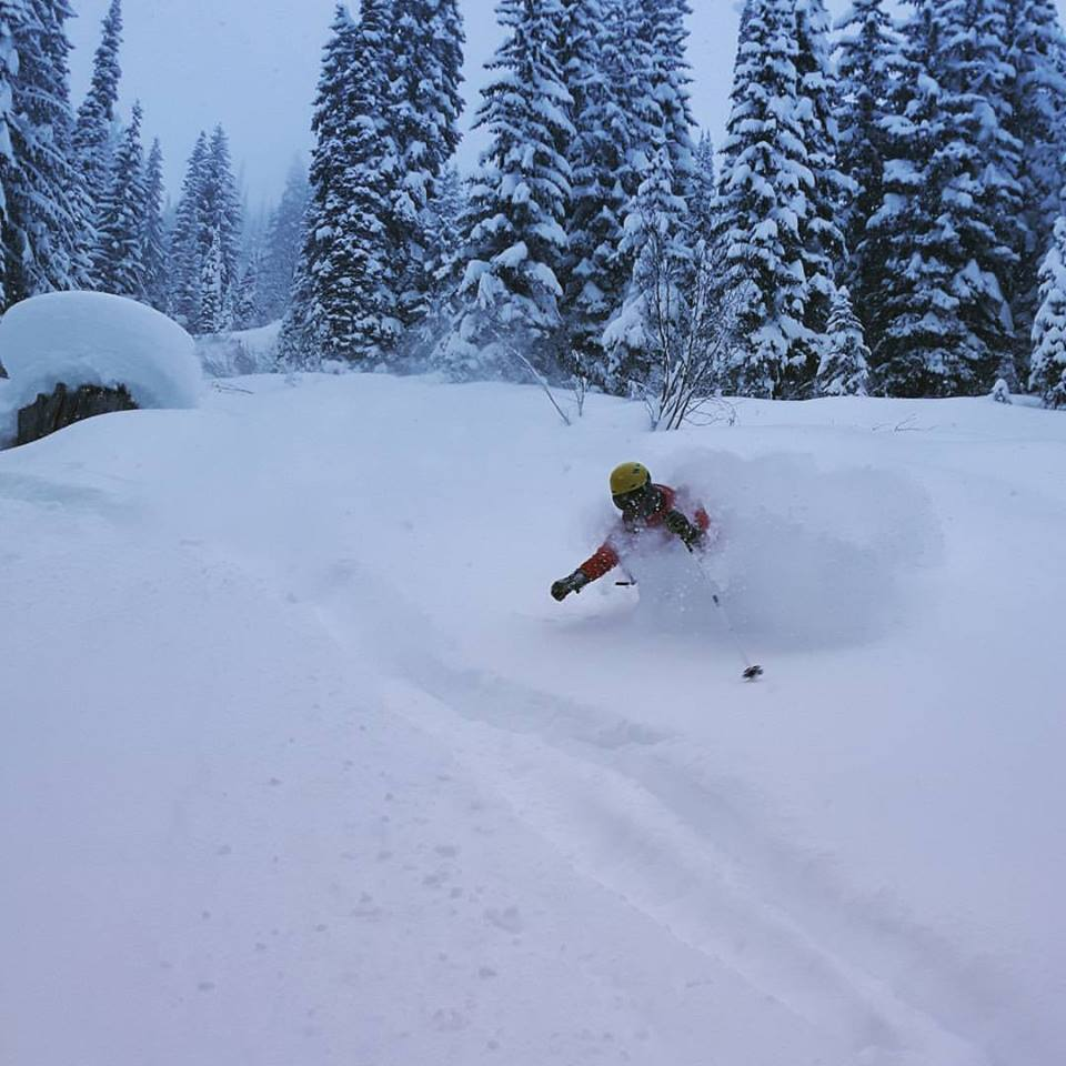 Snowpack:  270cm 48 hr. snow:  10cm 7 day snow: 110cm Total snowfall to date:  725cm Average temps:   -15c Santa Claus visited Great Northern and delivered over a meter of fresh snow between Christmas and New Year's.  It was piling up as fast as we could measure it, just in time for our first guest's arrival!! Blue skies and sunshine have been the order of business over the past couple of days, with nice cold temperatures keeping the snow dry and well-preserved. That pretty much sums it up around here --- deep lines and good friends to ski them with.  And if that's not what life's all about, it's close enough for us…