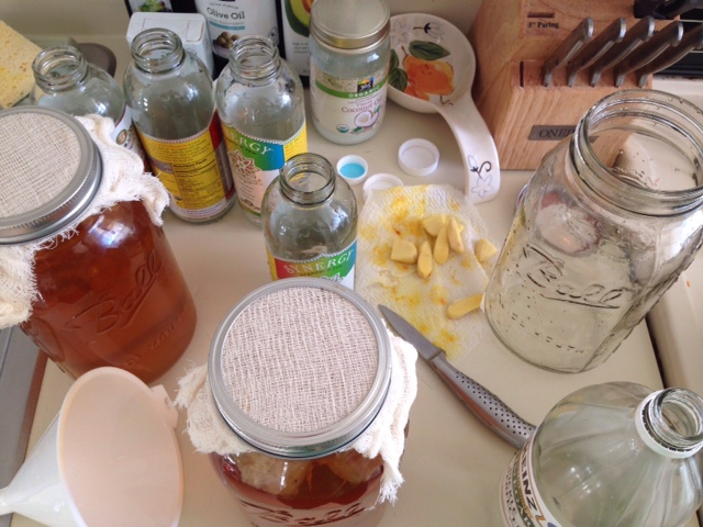 Kombucha Making
