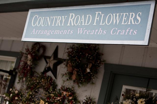 Country Road Flowers.jpg