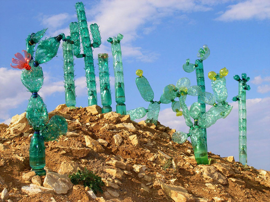Cactus Collection, PET-ART Sculptures – Veronika Richterova (www.nikkiweedon.com)