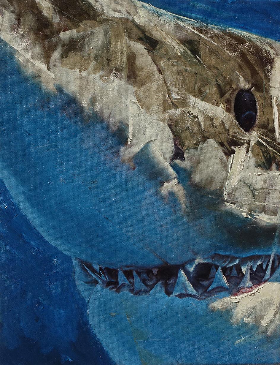 44_Sharkteeth_650.jpg