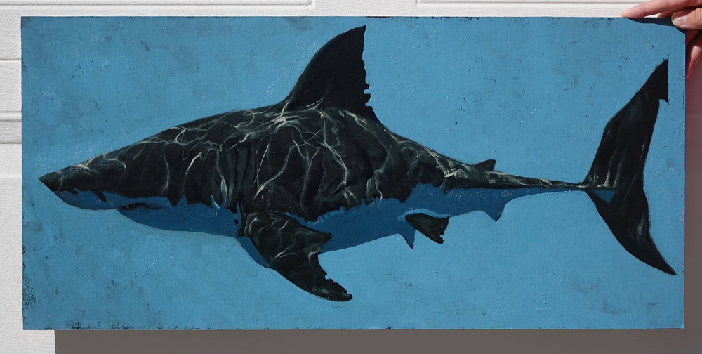 39_Profile_Shark2000.jpg