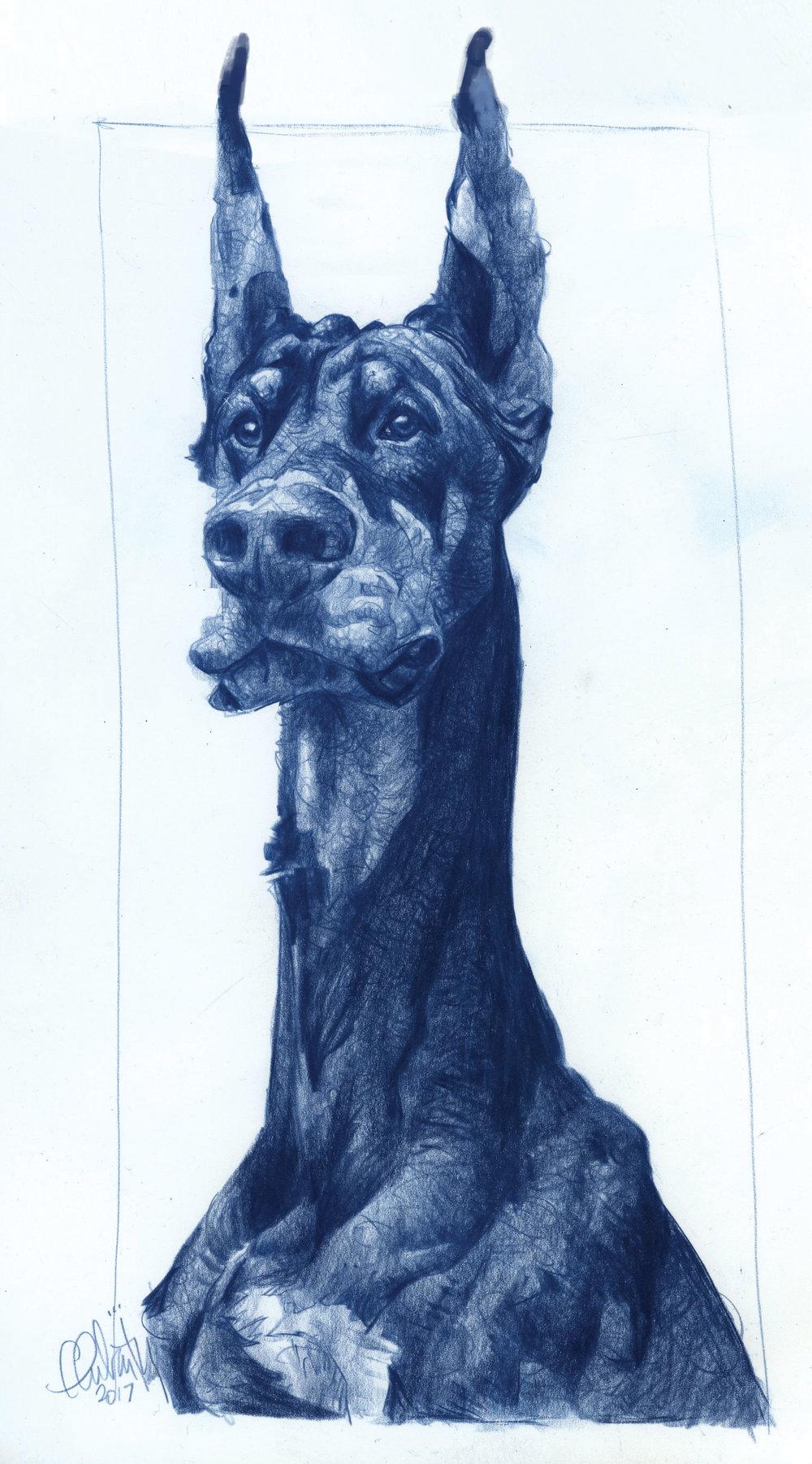 2. Bleu Line Portrait