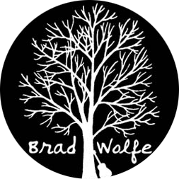 Brad Wolfe & The Moon