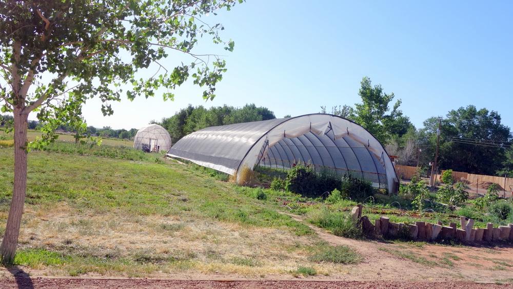 Hoop House on Farm Behind Farm & Table