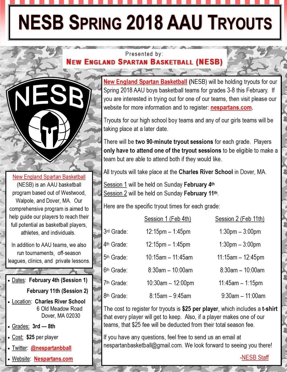 NESB Spring 2018 Tryout Flyer.jpg