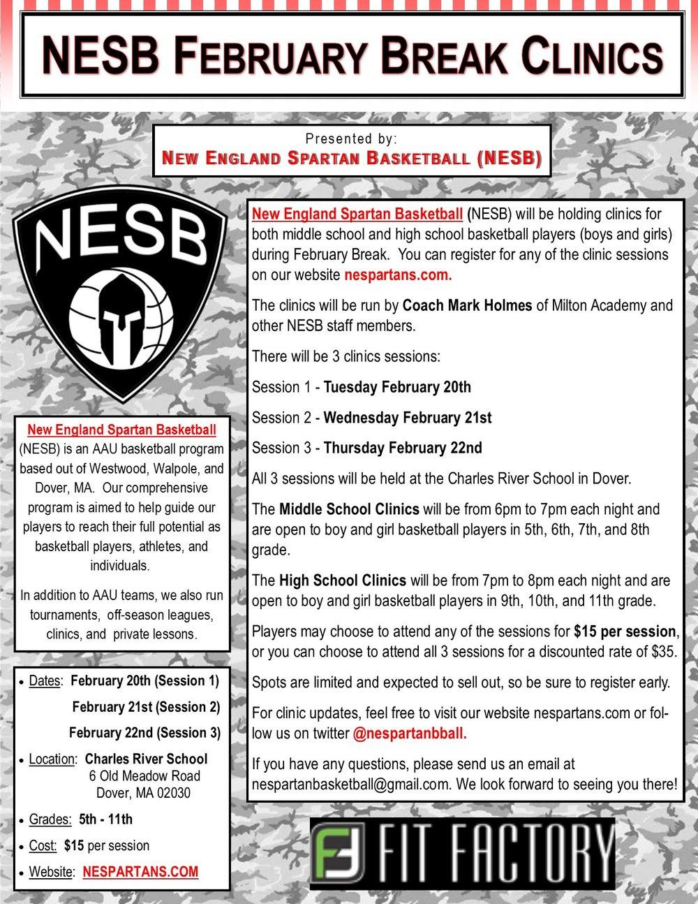 NESB February Clinics 2018.jpg