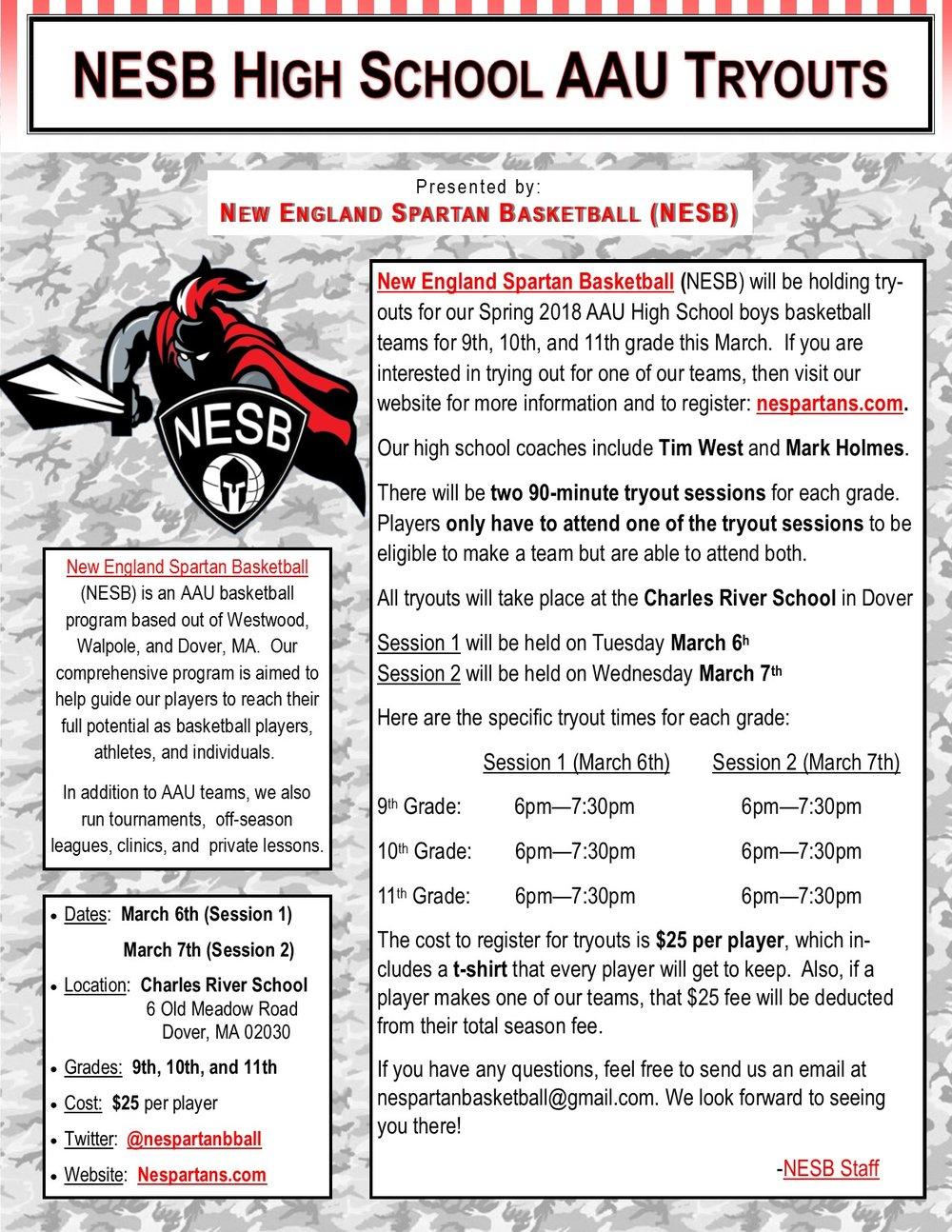 NESB Spring 2018 High School Tryout Flyer.jpg