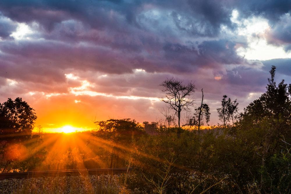 Sunrise-101.jpg