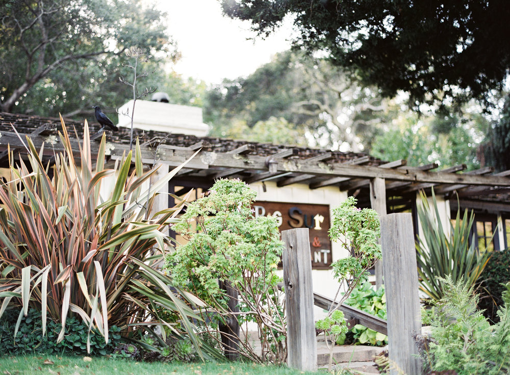 Big_Sur_by_Kayla_Barker_043.jpg