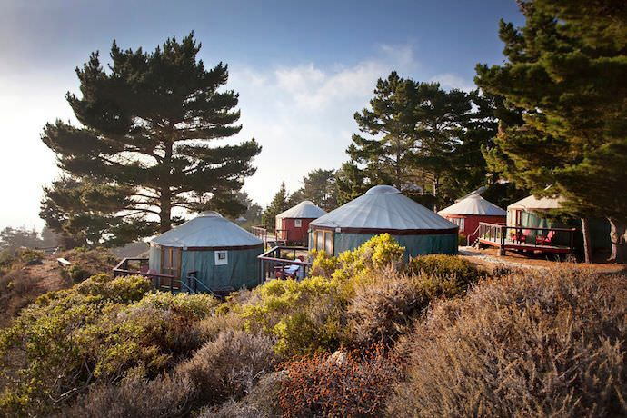 treebones-yurt.jpg