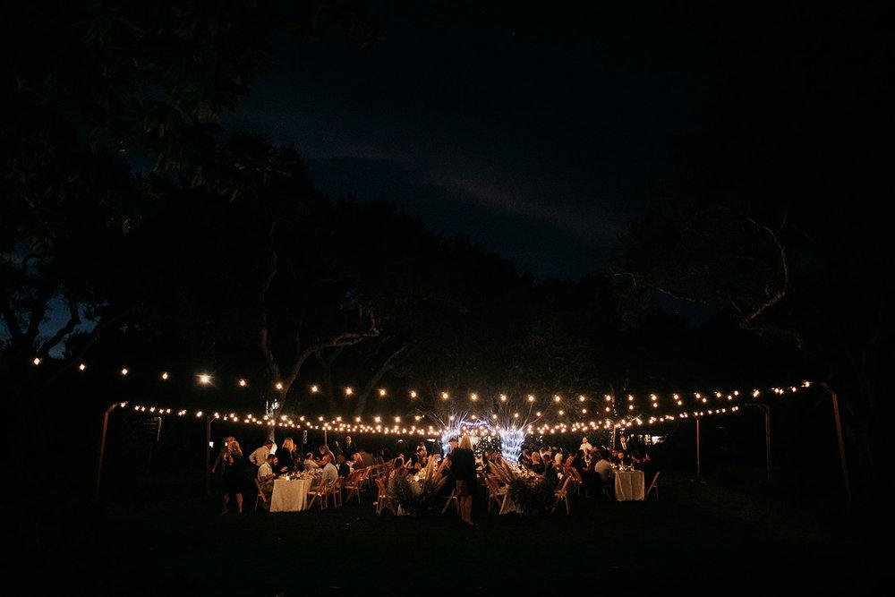 Carolyn_Travis_Wedding_IndiaEarl_BigSur_702.jpg