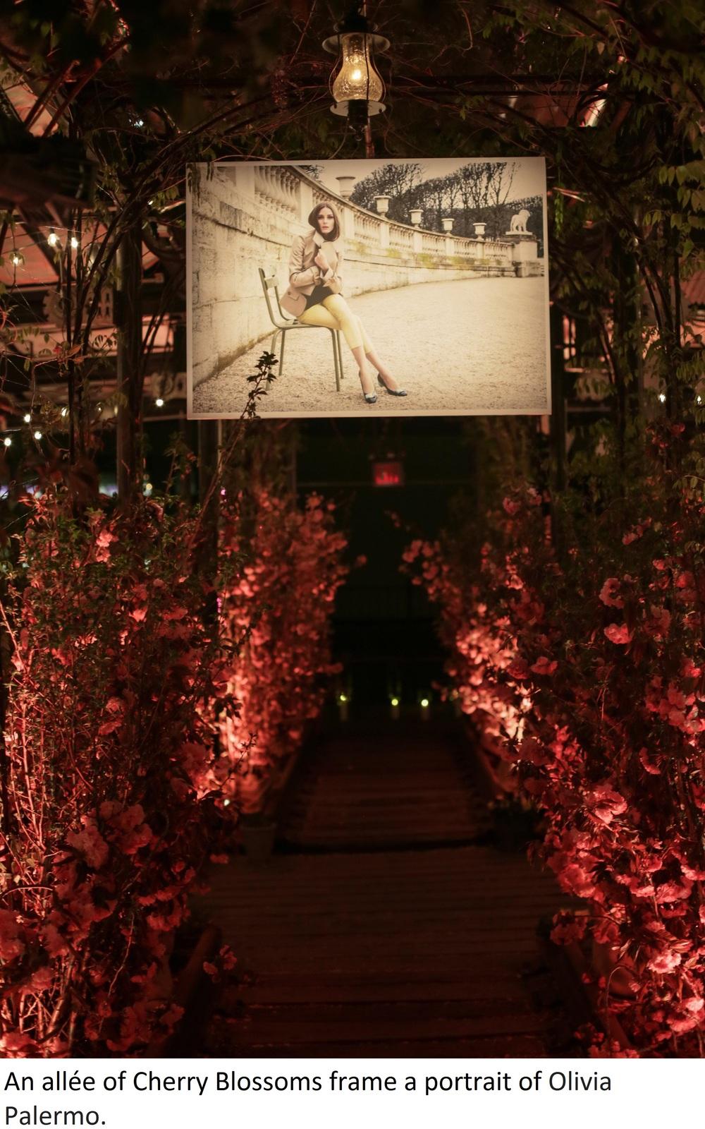 Flower Walkway.jpg