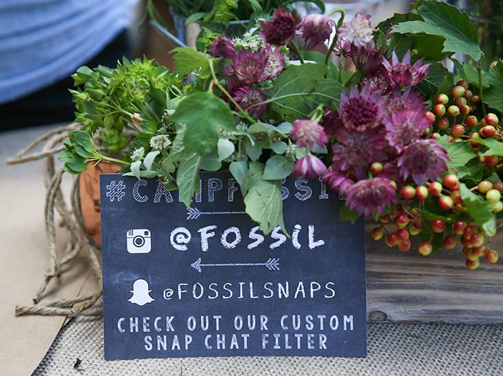 Fossil (4).jpg