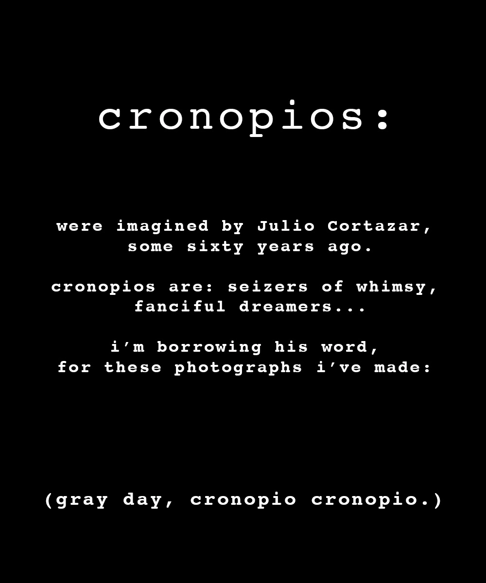 cronopios 2 ratio bigger.jpg