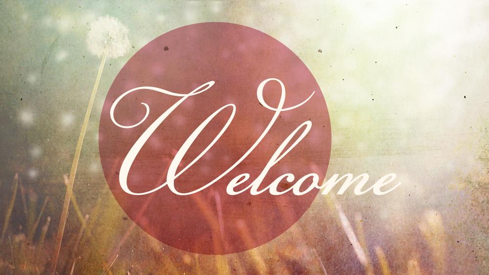 Dandelion_Welcome.jpg